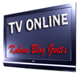 TV Movie Radio Player Full Terbaru   Free Download Software   Siaran