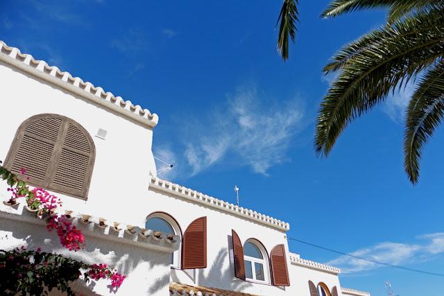 Sun and palm tree - Spain