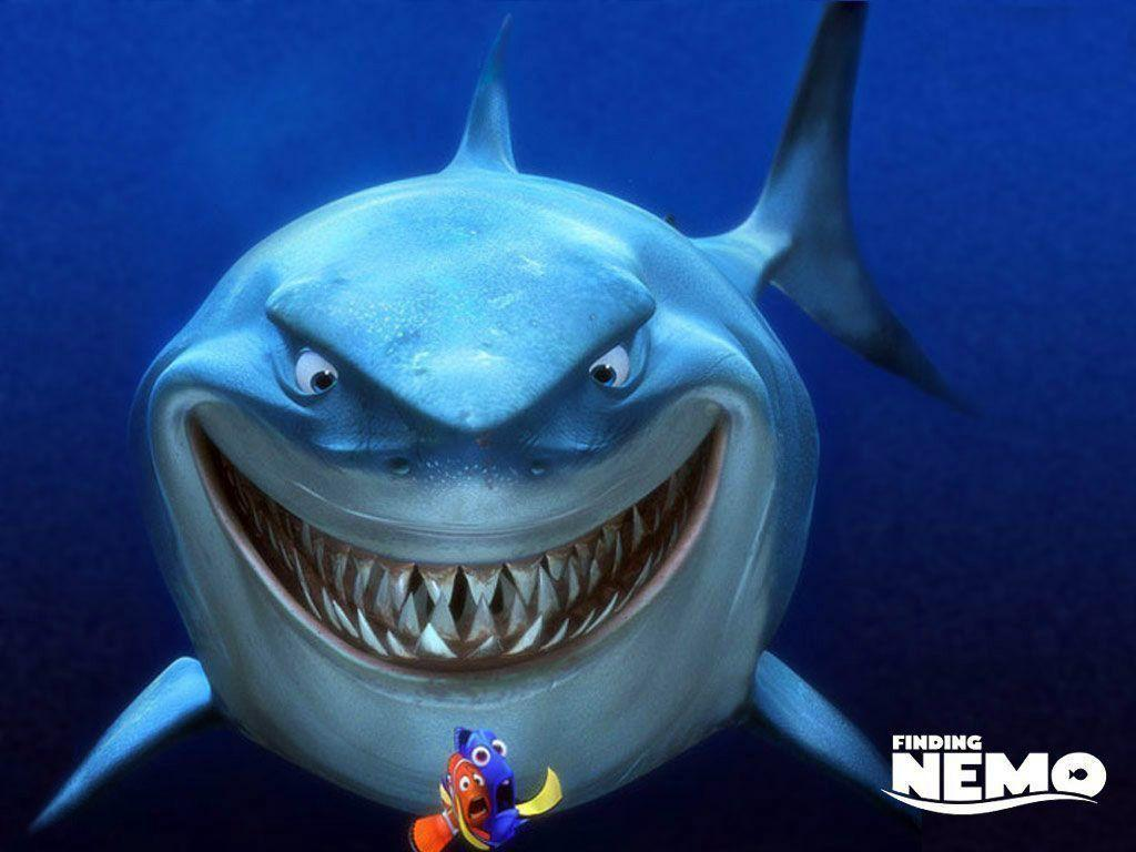 http://1.bp.blogspot.com/-UJJVh6nl3pY/TfL2S_xTIsI/AAAAAAAABmU/7xLe0Rn4KEw/s1600/Cartoon_Shark_Wallpaper_3.jpg