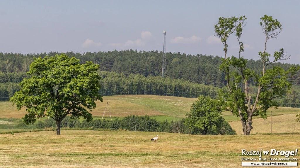 Piękne krajobrazy wokół Gietrzwałdu