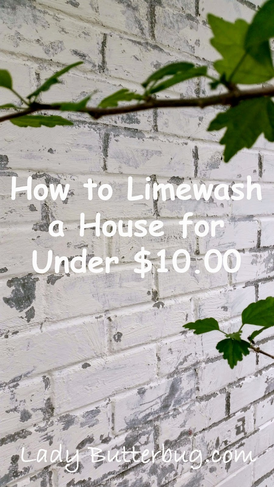 Lime Wash For Less Than $10.00