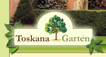 Promovari afaceri din judetul alba gradini frumoase si terapeutice toskana garten - Toskana garten ...