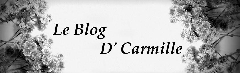 Le Blog D'Carmille
