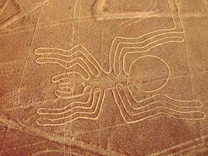 Gambar Garis Nazca Laba-laba
