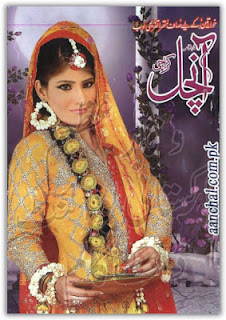 Aanchal Digest September 2013 pdf
