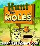 hunt the moles java games