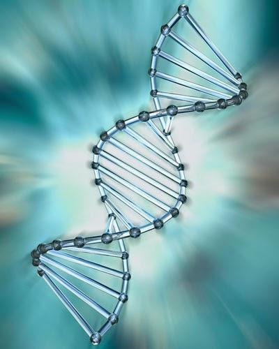 兩人情投意合嗎?讓<a href=http://www.tw17.com.tw/board.asp?com_ser=71><font color='#FF0000'><u>基因</u></font></a>檢測告訴你 Fall in love?Let genetic testing to tell you