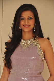 Hasha Nandini pos at cmr aashadam event 008.jpg