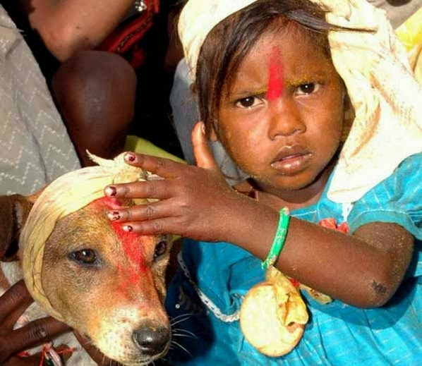 Baby girl marriage with Dog