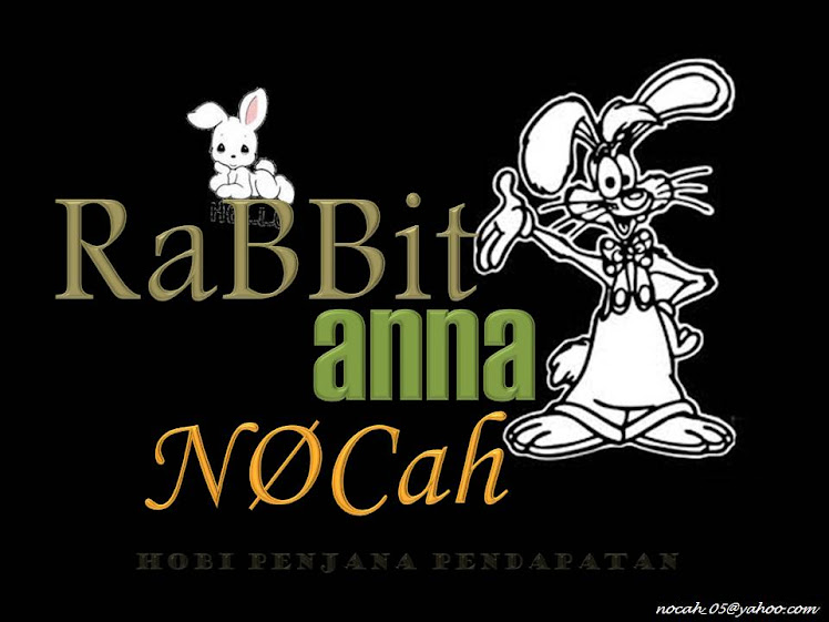 Rabbit ANNA NOCAH