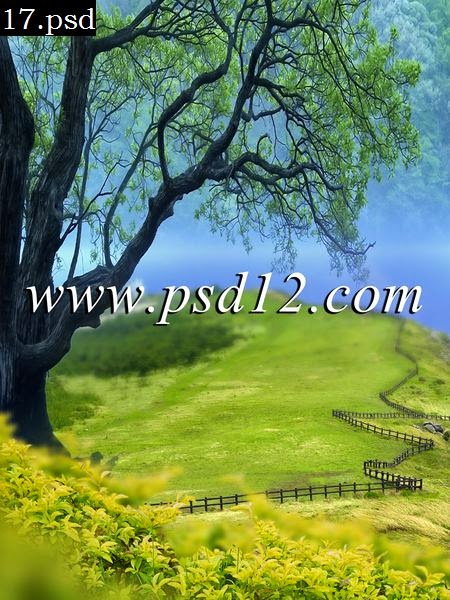 Photoshop Multi layer Studio Backgrounds