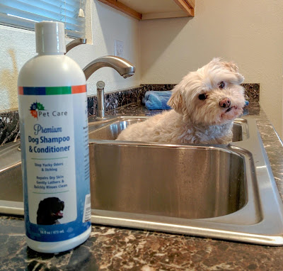 BVH Pet Care's Dog Shampoo & Conditioner contains all natural ingredients