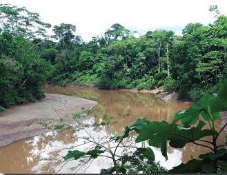 Reserva Ecológica Cofan Bermejo