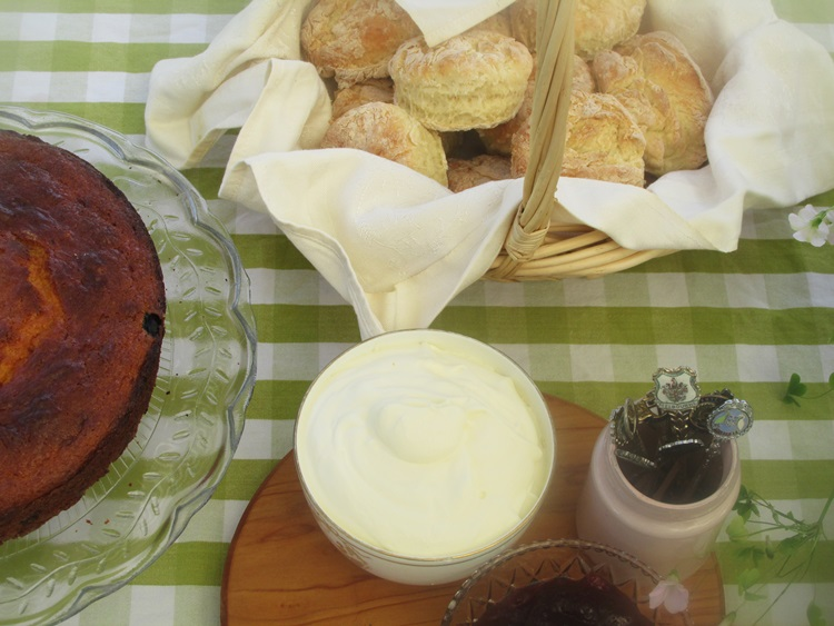Scones and blueberry yoghurt cake