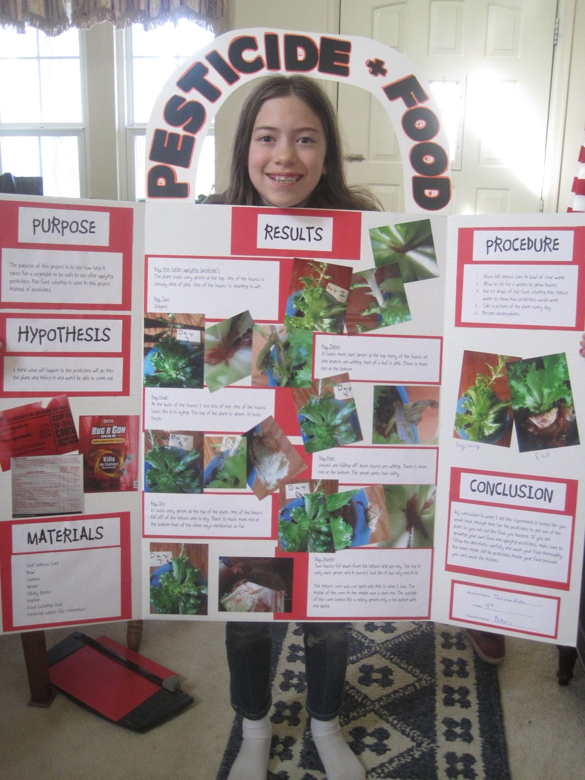 fourth grade science fair projects What is a good science fair project good science fair projects don't have to be time consuming, or super expensive, or multi-step although, science fair projects do.