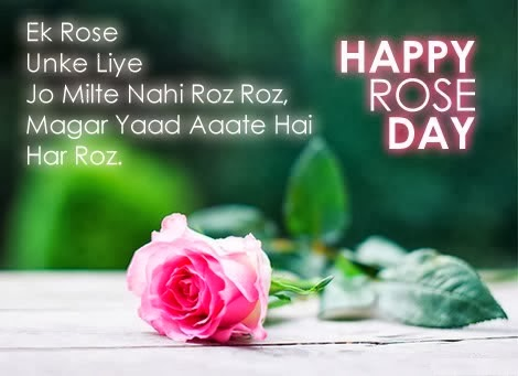 Happy Rose Day Wallpapers, Happy Rose Day Pictures, Happy Rose Day Images, Happy Rose Day Wishes in Hindi