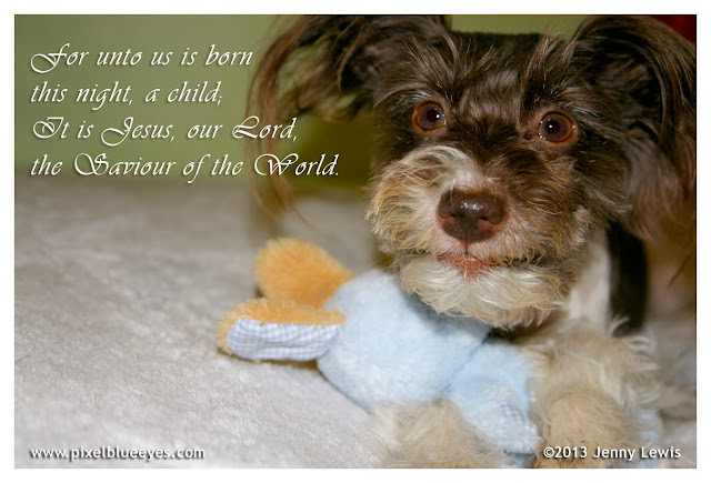 """Image of Pixel """"For unto  us is born this night, a child; It is Jesus our Lord, the Savior of the world."""""""