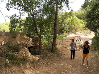 La barraca de vinya arran del camí, i al fons el Coll d'Orpí
