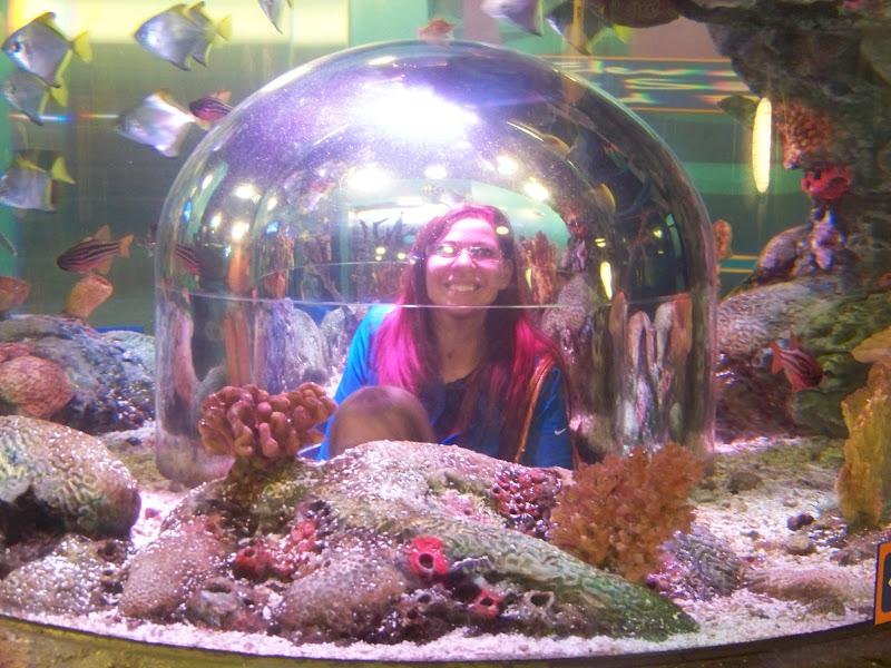 Oney Family Adventures Sea Life Aquarium In Grapevine