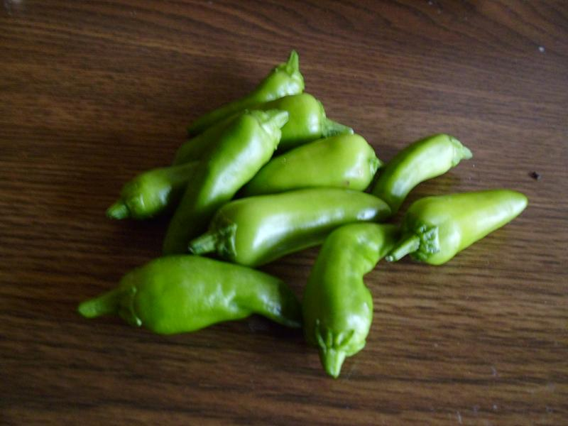 Container grown Fresno peppers