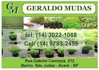 GERALDO MUDAS EM AVARÉ - SP