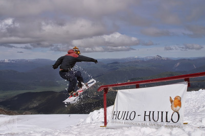 Snowboard no Bosque Nevado