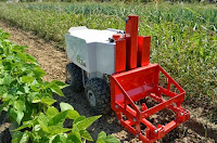 Robots for Weeding - Naio Technologies