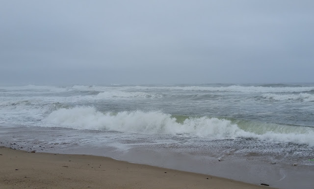 Wordless Wednesday:  Cape Cod 2015 Pictures --Marconi Beach -- How Did I Get Here? My Amazing Genealogy Journey