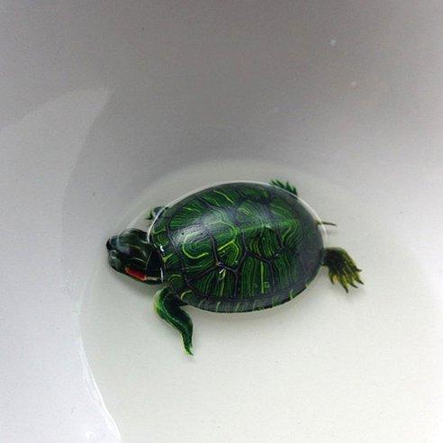 Allpe medio ambiente blog animales - Pintura de resina ...