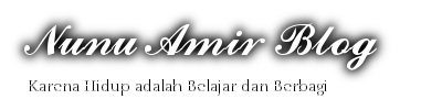 Nunu Amir Blog