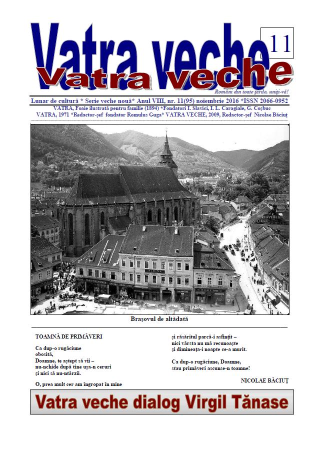 VATRA VECHE 11 (95)
