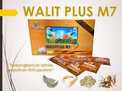Walet Plus M7 G2