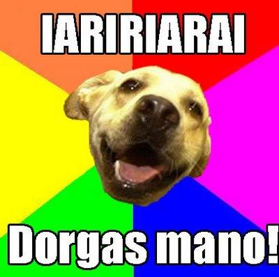 Cachorro Dorgas - Dorgas Manolo