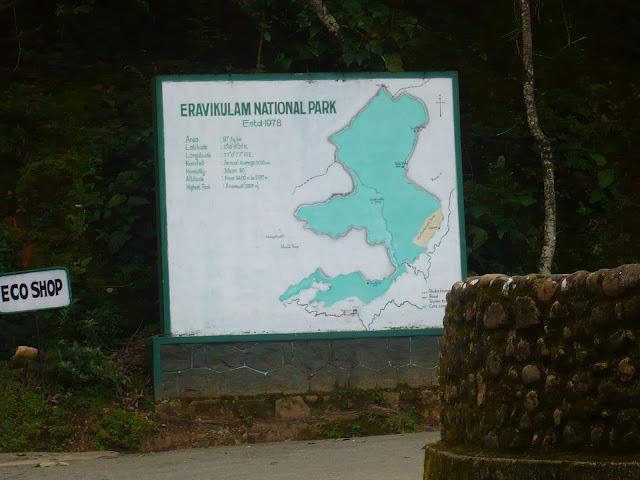 മൂന്നാറിലേക്ക് (ഭാഗം 3) - ഇരവികുളം നാഷണൽ പാർക്ക്