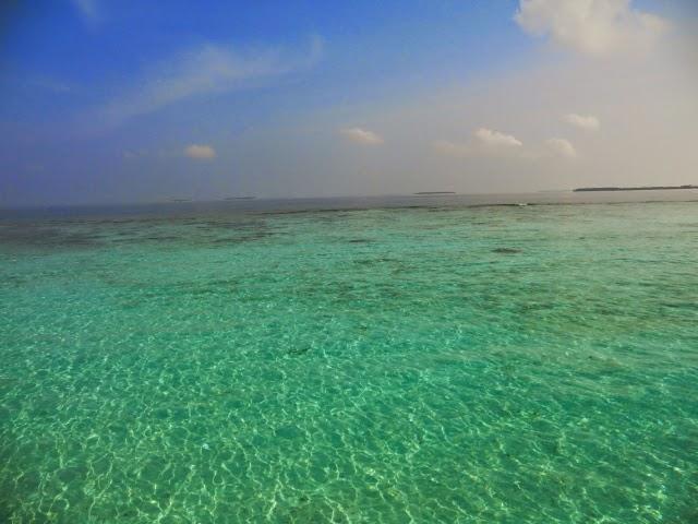 Prozrachnij-Okean