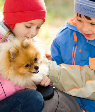 Beautiful kids with cute little puppy images