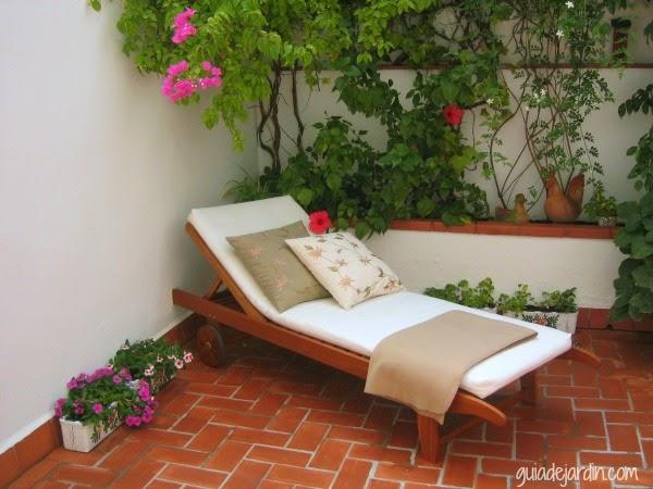El patio de luc a guia de jardin for Patios exteriores de casas