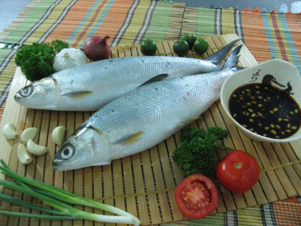 Milkfish Food