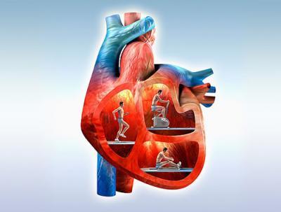 Aposte nestes exercícios para o seu coração