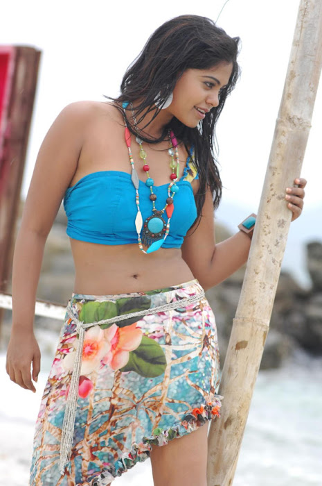 bindu madhavi in spicy beach song glamour  images
