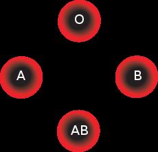 dieet bloedgroep
