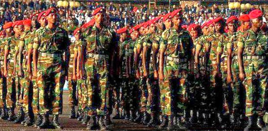 http://www.tigraionline.com/articles/ethiopian-military-age.html