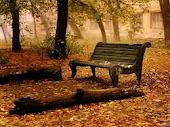 ¡Me gusta pisar hojas en otoño!
