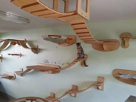 Creative wooden wall furniture for Cats | Cat Gaming furniture