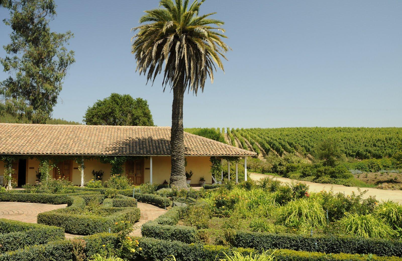 Novedades turisticas el espect culo del vino una for Novedades del espectaculo