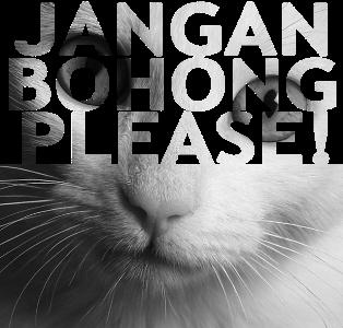 http://1.bp.blogspot.com/-UQr5dnyJM0I/TVP2WY3zHeI/AAAAAAAAABQ/Kx234FMEf_4/s1600/Jangan-Bohong-Please%2528kecil%2529.png