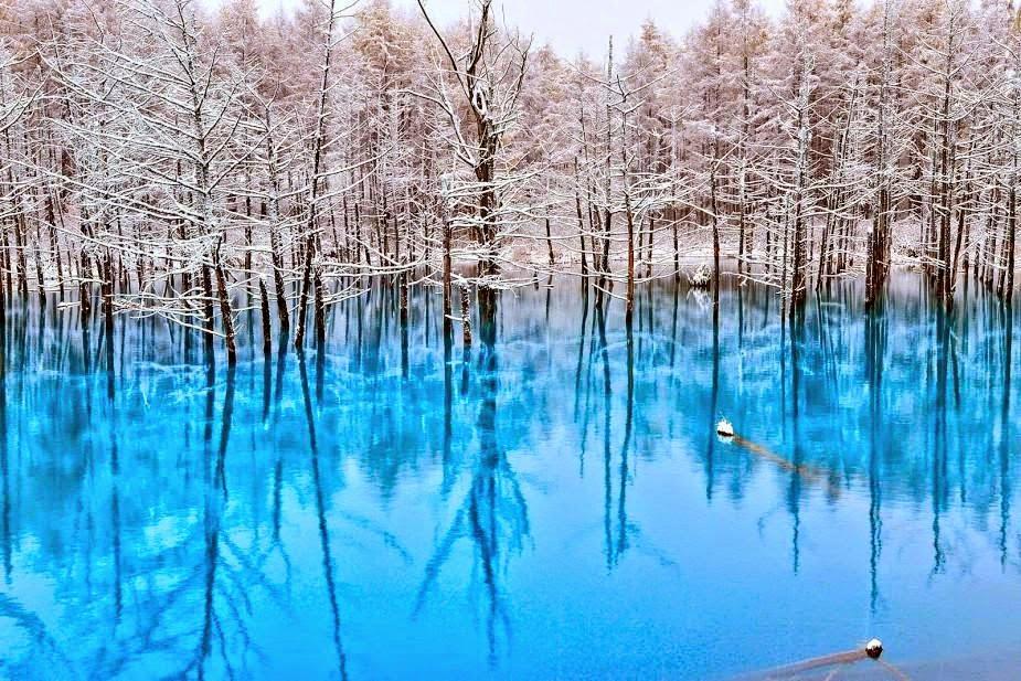 Blue Pond in Hokkaido, Japan
