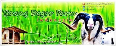 Saung Dogar Farm Indonesia