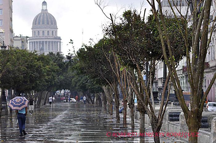 Paseo del Prado bajo la lluvia en La Habana, Cuba, el 15 de febrero de 2013.