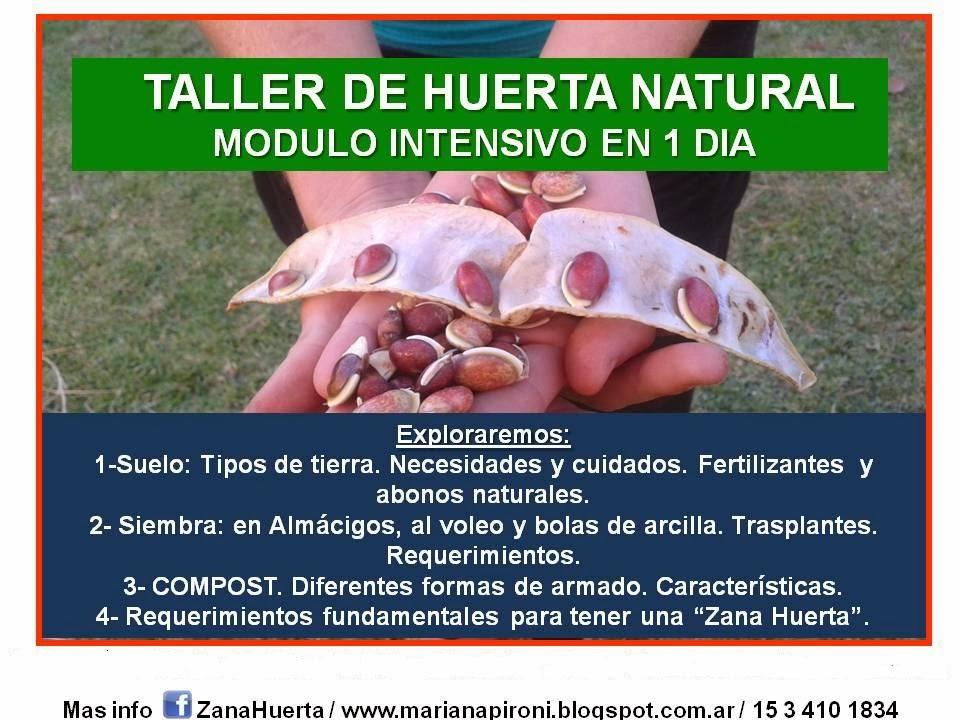 Taller intensivo Huerta